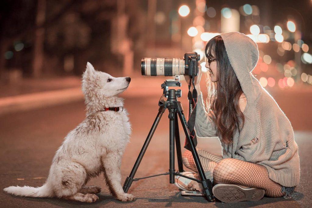 strona internetowa dla fotografa